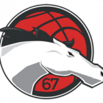 Logo Leicester Riders